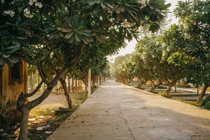 Green Cultural Travel - Cambodia - Tours - Silk Island (10)