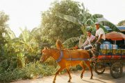 Green Cultural Travel - Cambodia - Tours - Silk Island (7)
