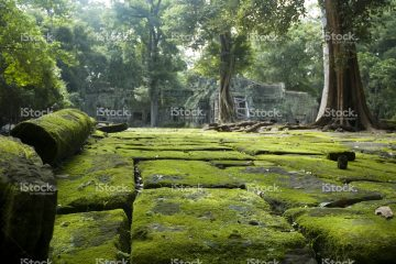 Green Cultural Travel Custom Journey Cambodia