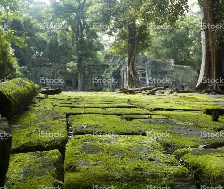 Green Cultural Travel Custom Journey Cambodia
