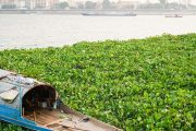 Green Cultural Travel - Cambodia - Tours - Fishing village (13)