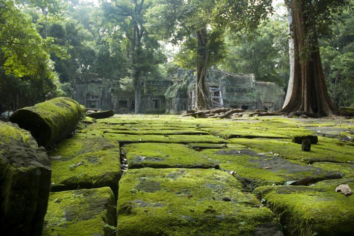 Green Cultural Travel - Cambodia - Angkor Wat