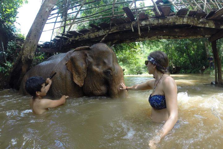 Green Cultural Travel - Cambodia - Mondulkiri - Elephant enjoying his bath